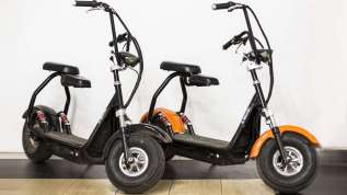 Mini electric scooter (citycoco) rent